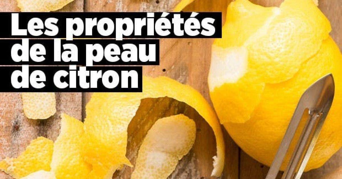 Les proprietes de la peau citron11