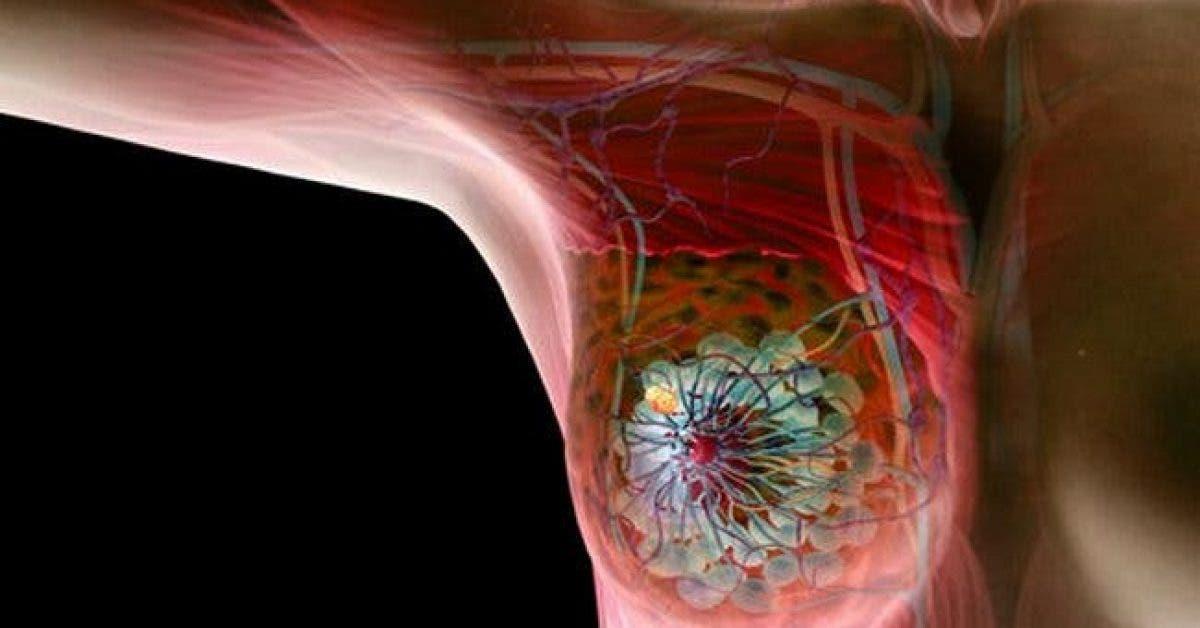 Les scientifiques affirment que cette odeur commune vous eloigne du cancer 1