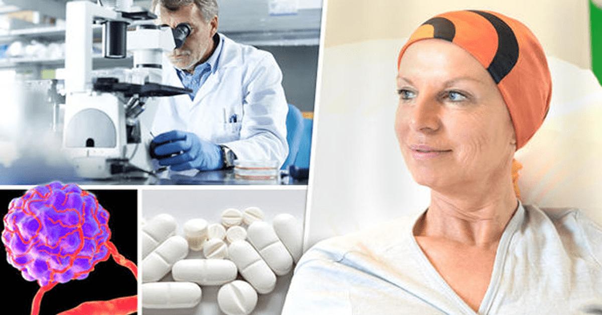 Les scientifiques decouvrent que les cellules cancereuses peuvent sautodetruire 1