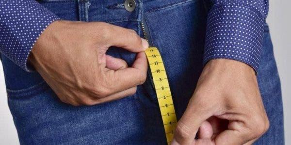 Les scientifiques révèlent la taille normale du pénis