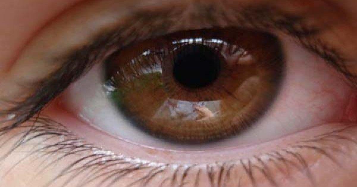 Les secrets des personnes aux yeux marron quelles memes ignorent 1