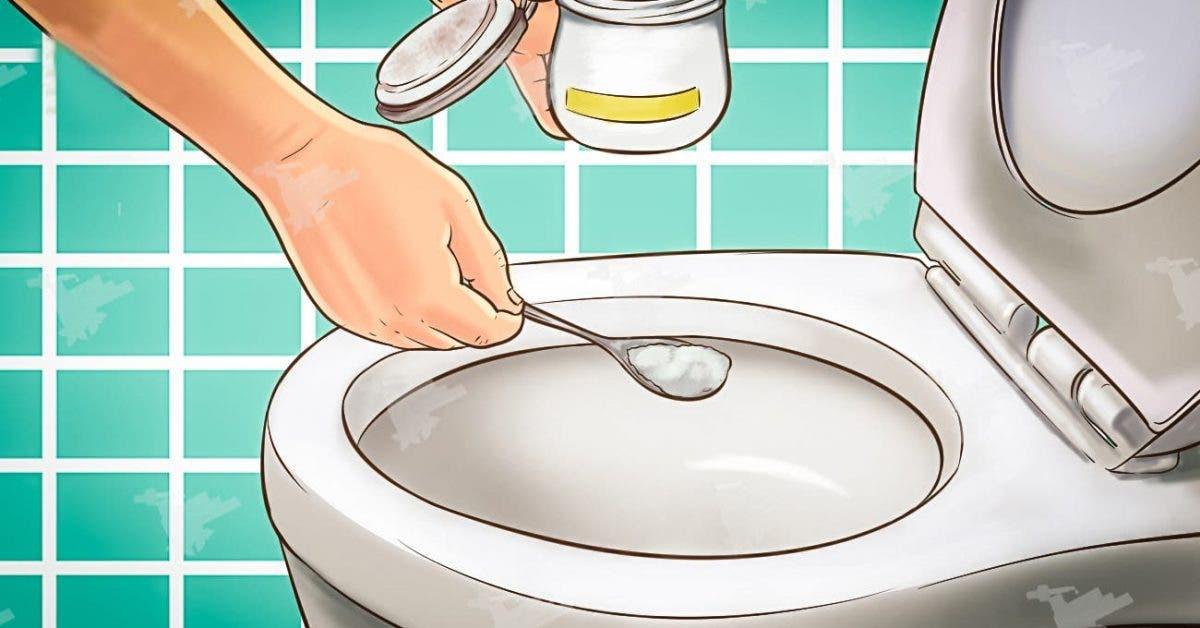Les toilettes sentent toujours bon et restent propres