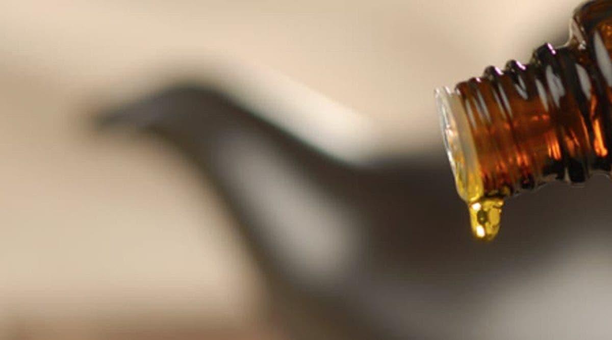 L'huile qui combat la migraine