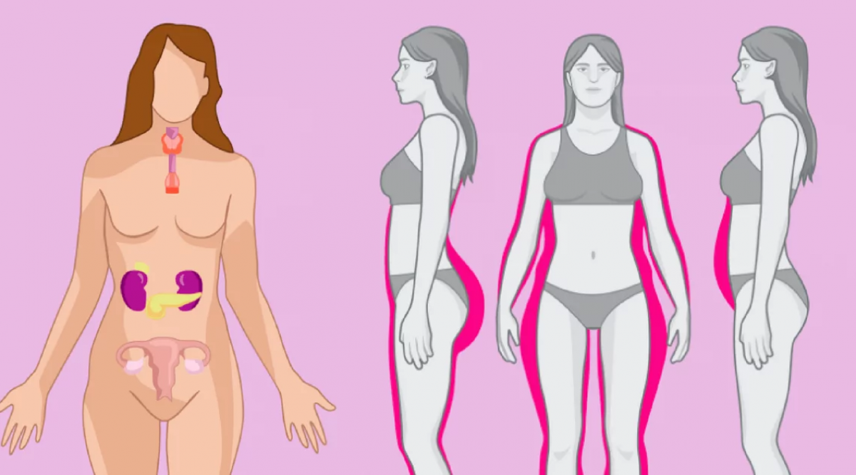Lorsqu'elles sont déséquilibrées, ces 4 hormones vous empêchent de perdre du poids voici comment les équilibrer