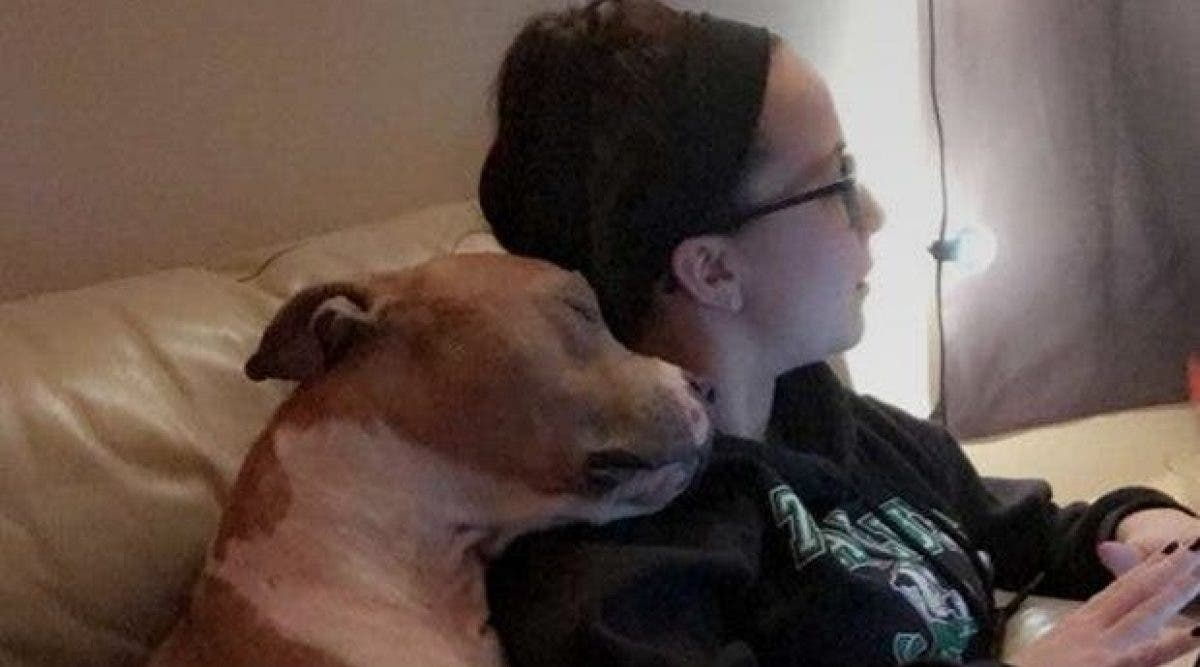 Menacée d'euthanasie, elle l'adopte. Ce que fait cette chienne depuis qu'elle l'a ramené chez elle est bouleversant. Juste génial.