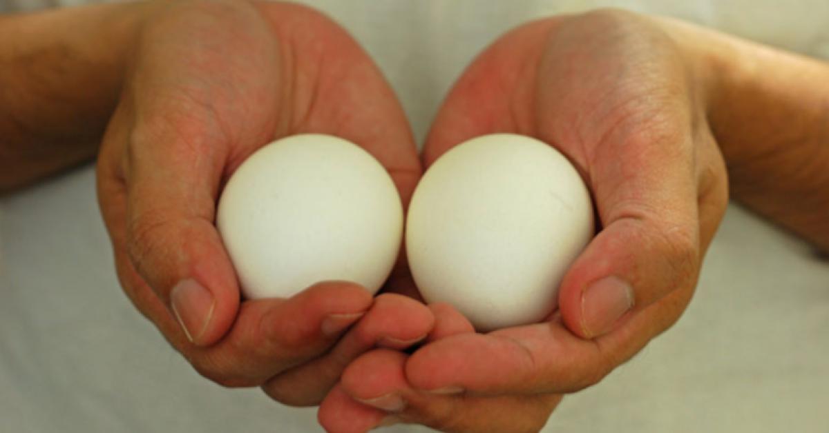 Commencez à manger deux œufs par jour et ces sept changements arriveront à votre corps