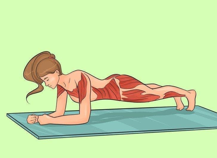 Planche avant bras 1 1