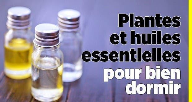Plantes et huiles essentielles pour bien dormir for Plante pour dormir