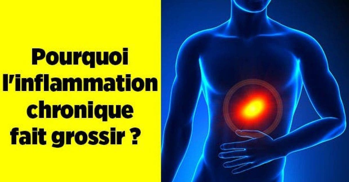 Pourquoi inflammation chronique fait grossir11