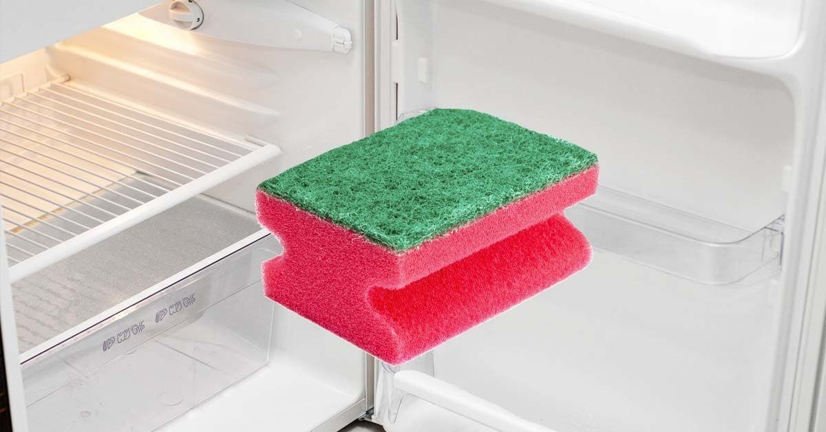 une éponge à vaisselle