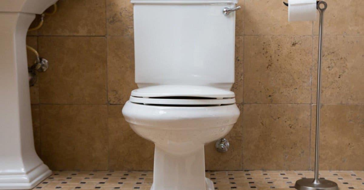 verser de l'assouplissant dans le réservoir des toilettes