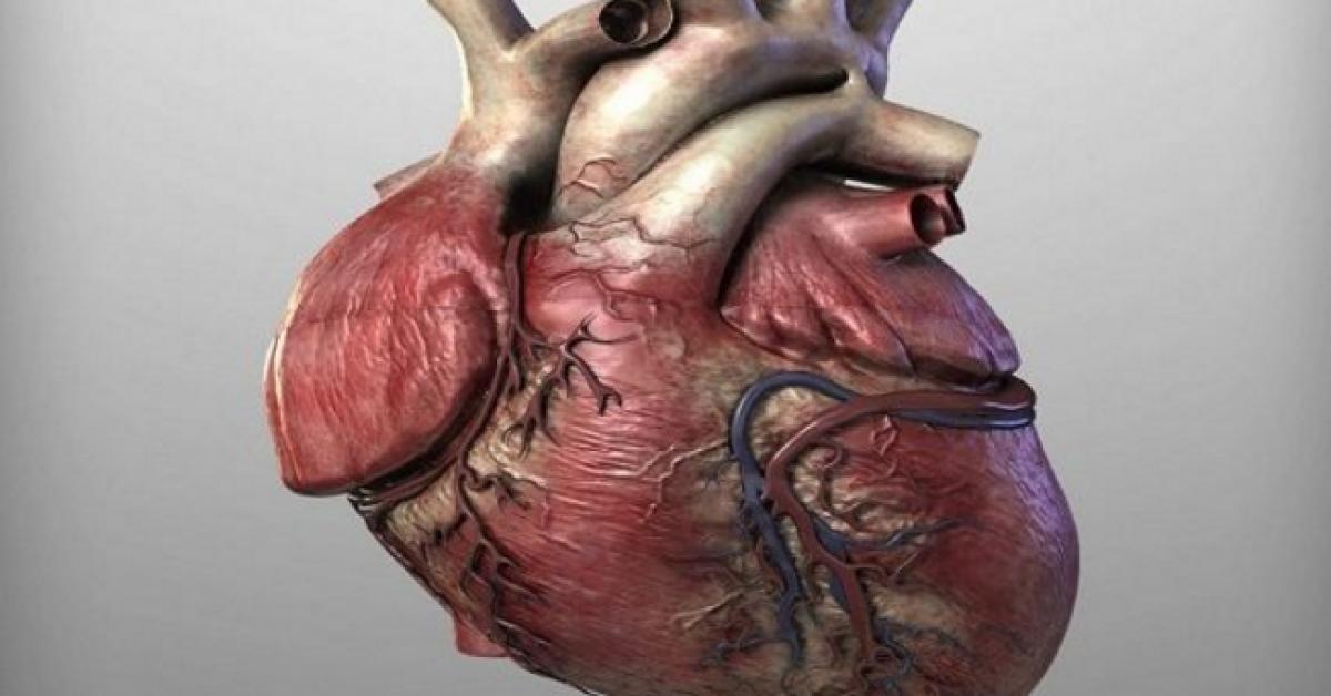 Prevenez les maladies cardiaques 4 cuilleres a soupe de cette recette pour deboucher vos arteres et eviter lhypertension arterielle 1