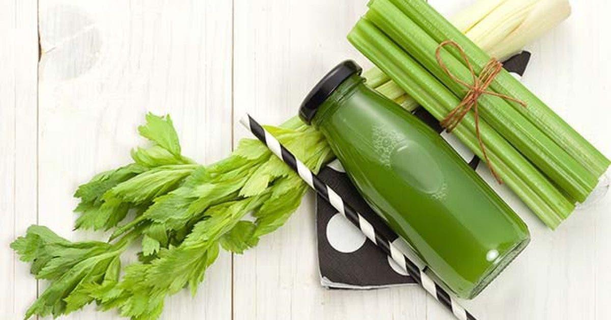 Quels sont les aliments qui detoxifient le corps11