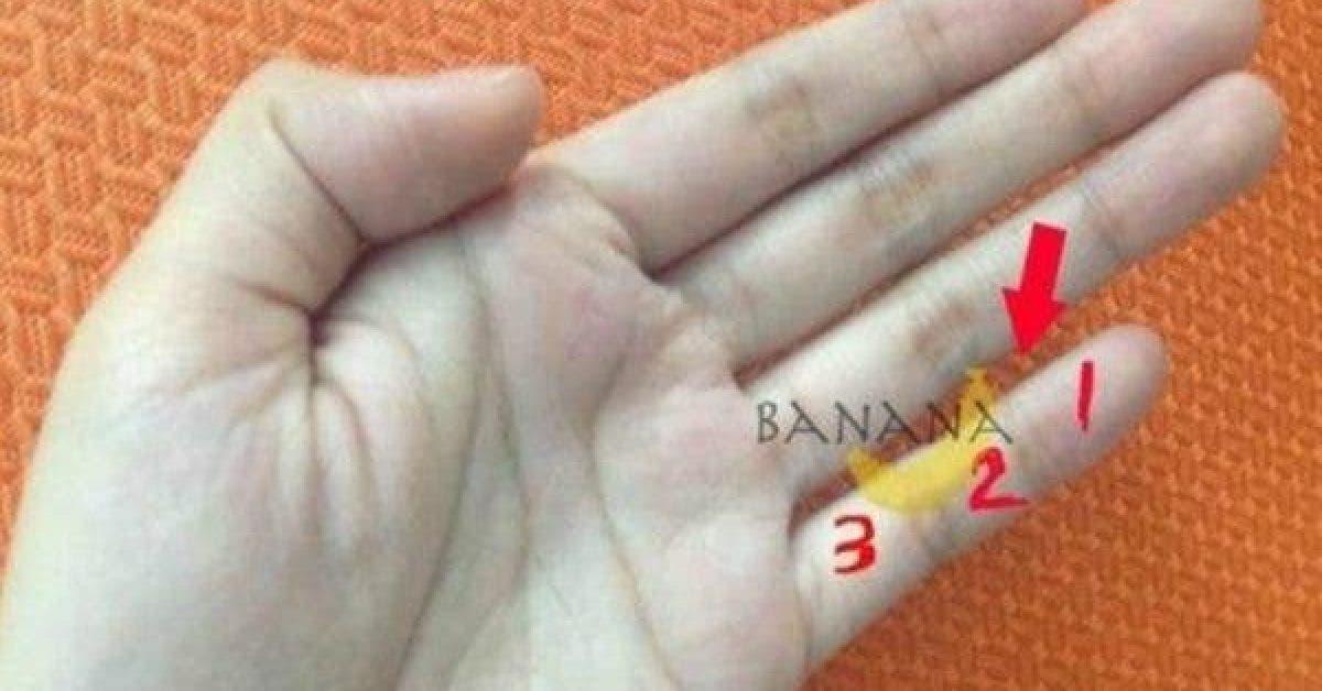 Regardez vos mains savez vous quils en disent long sur votre personnalite 1