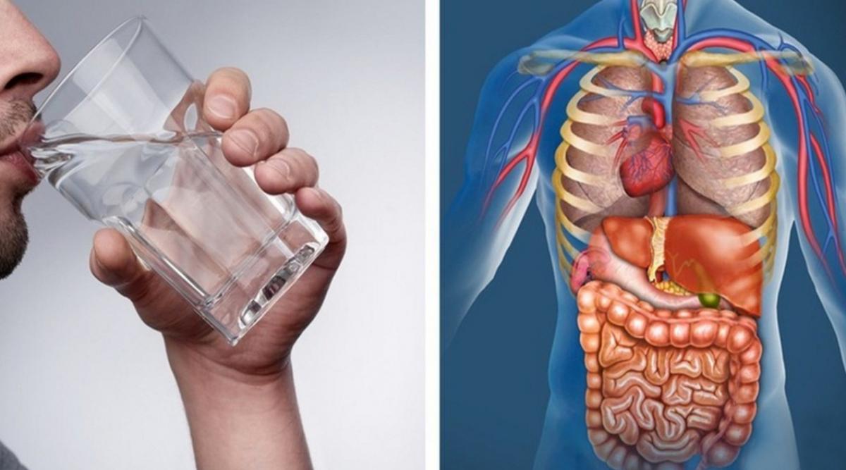 Remplacez toutes les boissons par de l'eau pendant 30 jours et regardez ce qui arrive à votre corps
