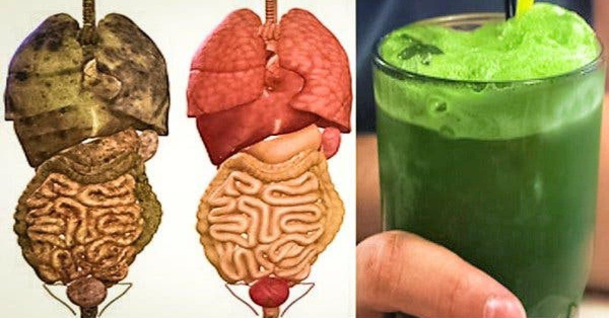 Ces superbes boissons vont supprimer les TOXINES et GRAISSES de votre corps