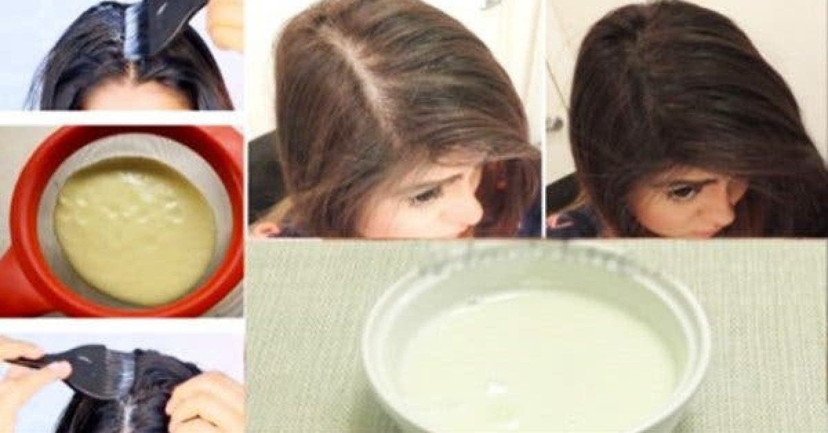 THIN AND BALD HAIR MAGIC GROW YOUR HAIR FAST WITH ONLY 2 INGREDIENTS 1 1