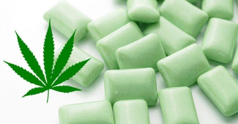 Un chewing-gum au cannabis pour soulager les douleurs de la fibromyalgie