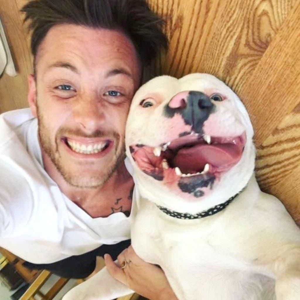 Un homme publie cette photo de son nouveau chien