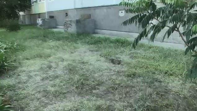 Un petit garçon saute du 9ème étage à cause de ses parents