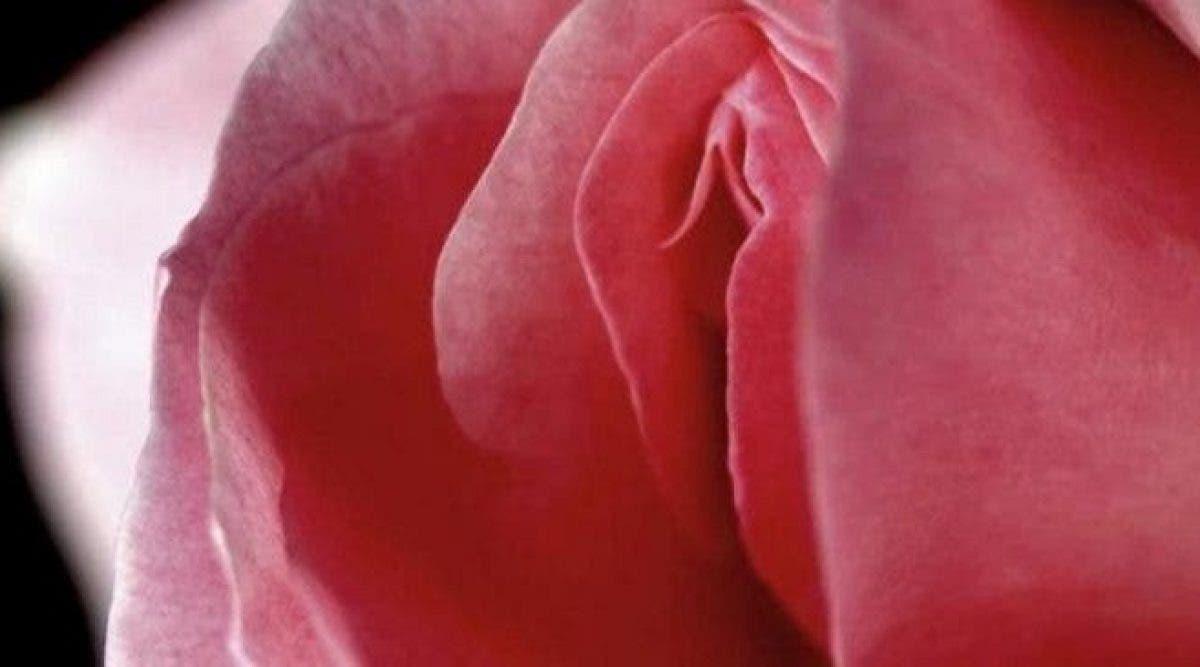 Un professeur basé à Londres a développé un vagin bionique