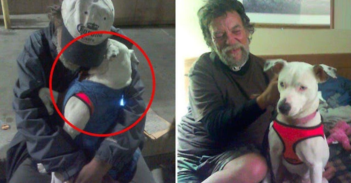 Un sans-abri atteint de cancer sauve une chienne de coups violents. Maintenant, il veut une seule chose avant de mourir
