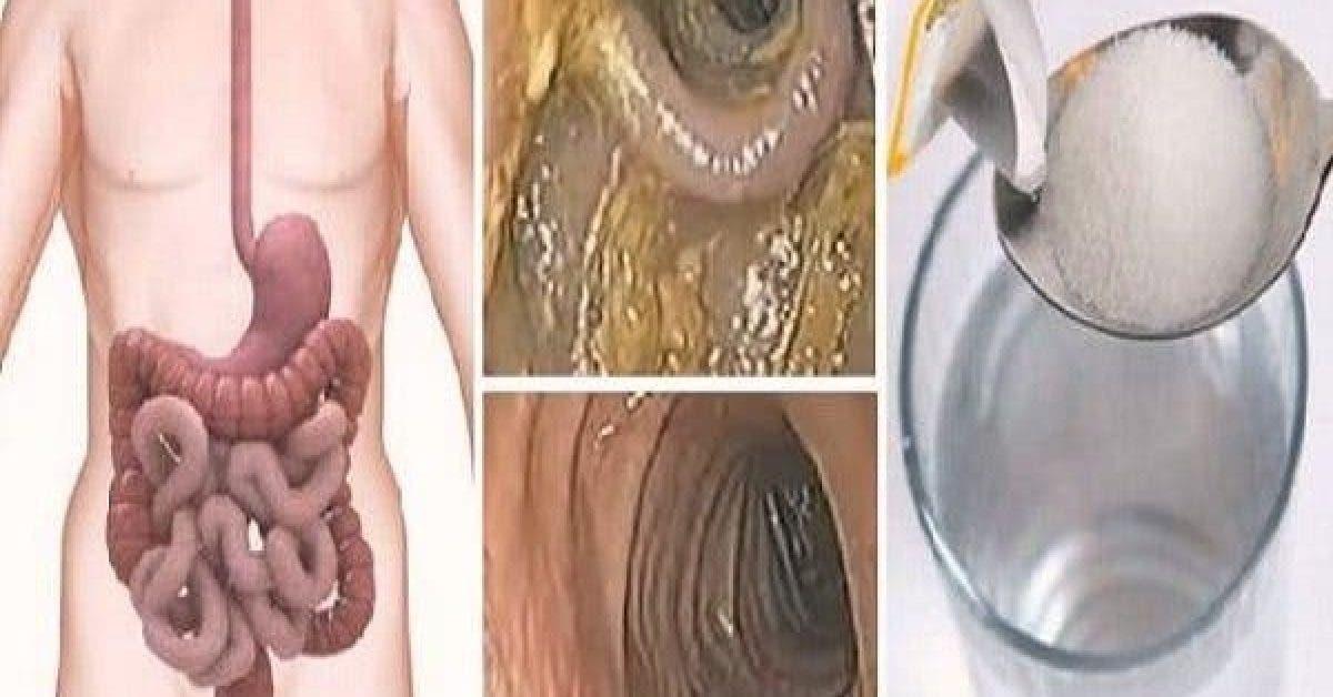 Une cure détox de 48 heures pour le foie, le côlon et les reins. Elle va éliminer les toxines et les graisses de votre corps