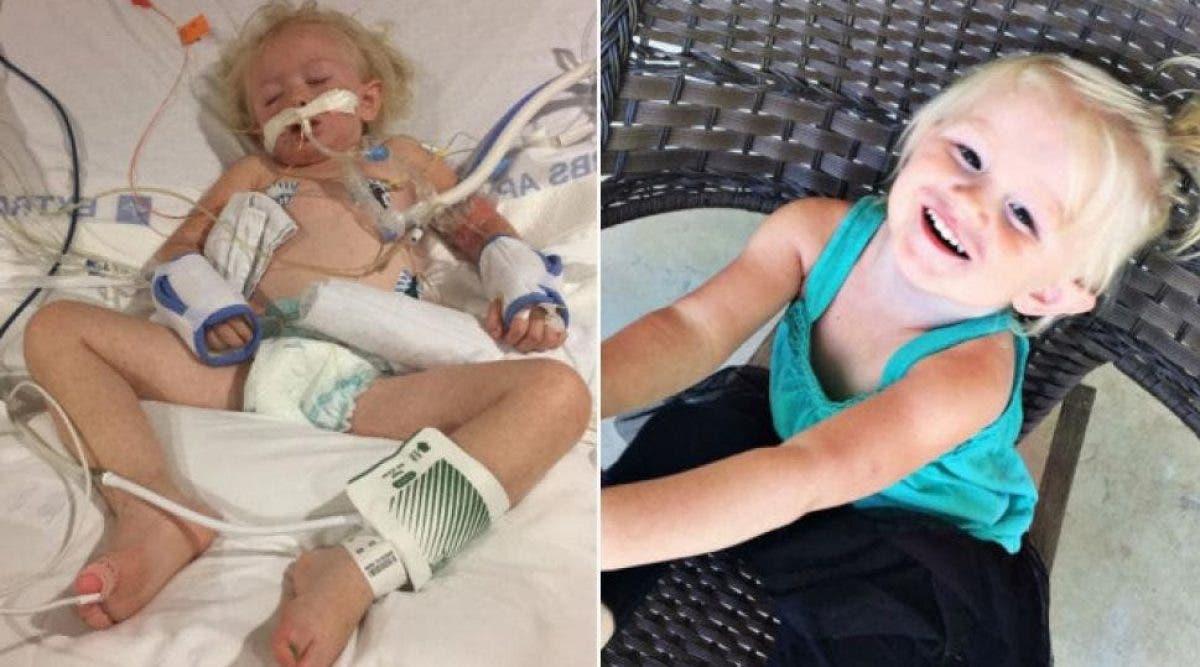 Une fille de 2 ans meurt à cause d'une morsure de tique