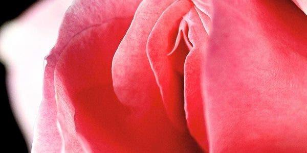 Une gynécologues souhaite donner 5 informations sur le vagin