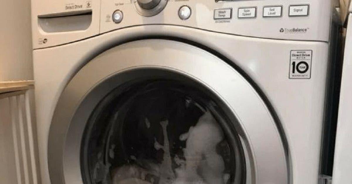 Une petite fille sest retrouvee bloquee dans la machine a laver et personne na entendu ses cris 1