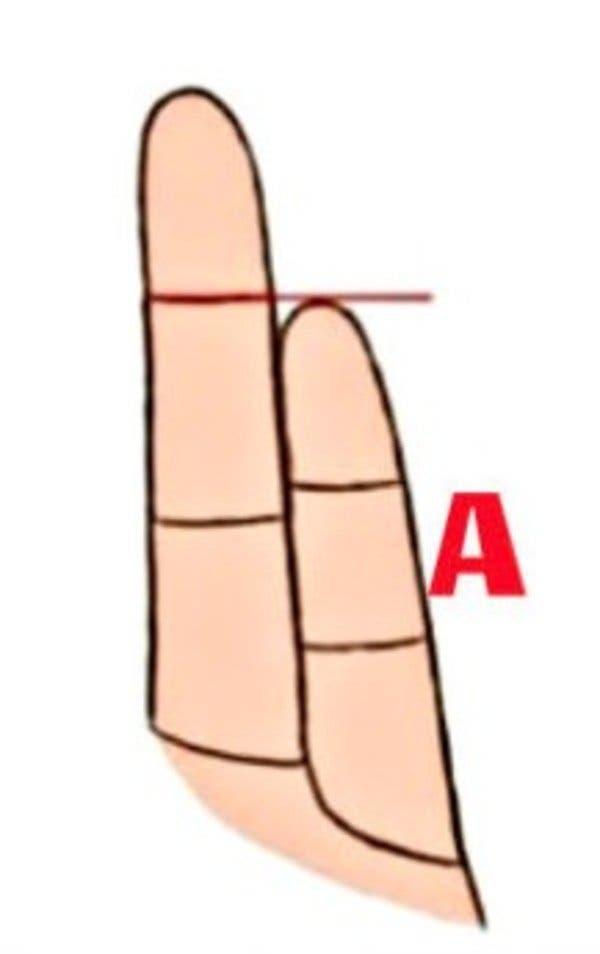 Voici ce que révèle la longueur de votre auriculaire sur votre personnalité