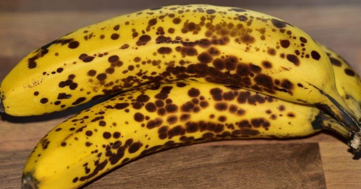 Voici ce qui vous arrive si vous mangez deux bananes par jour pendant un mois. Tout le monde doit essayer ça !