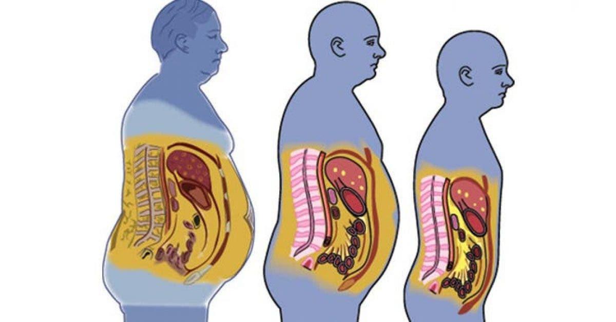 Voici comment degonfler votre ventre 1