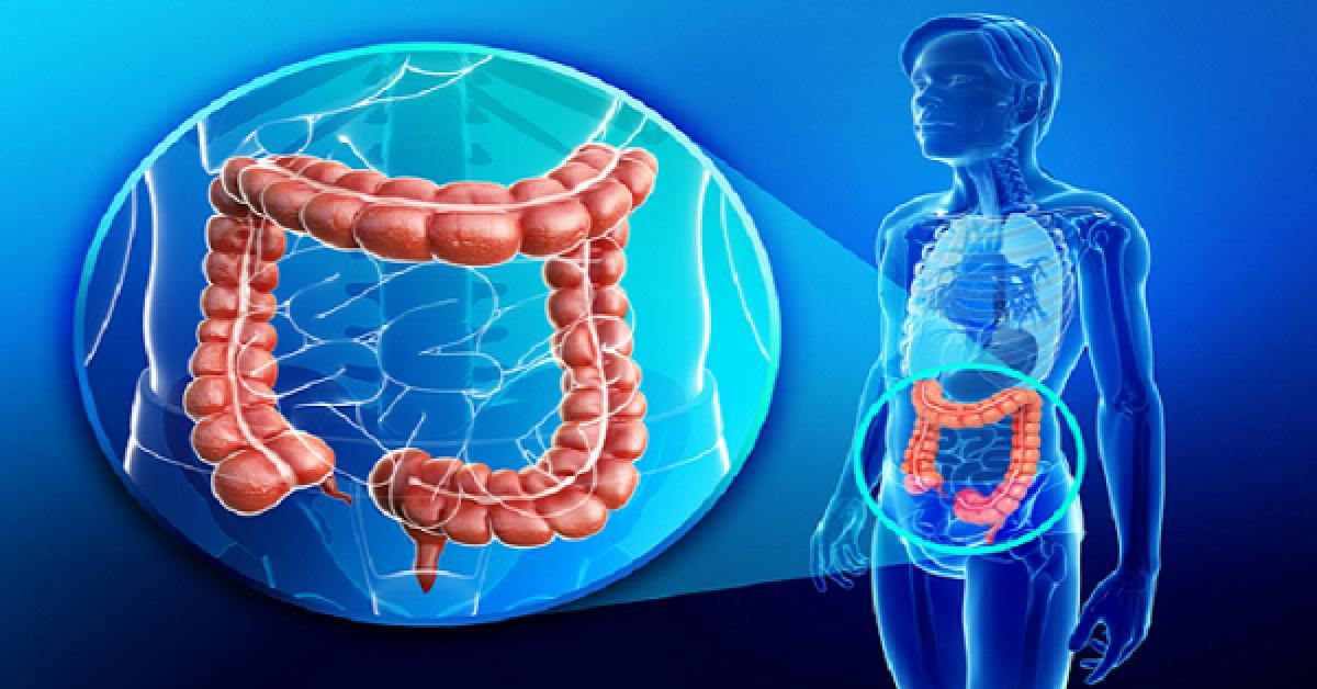 Voici comment vous debarrasser des 15 kilos de dechets de votre colon 1