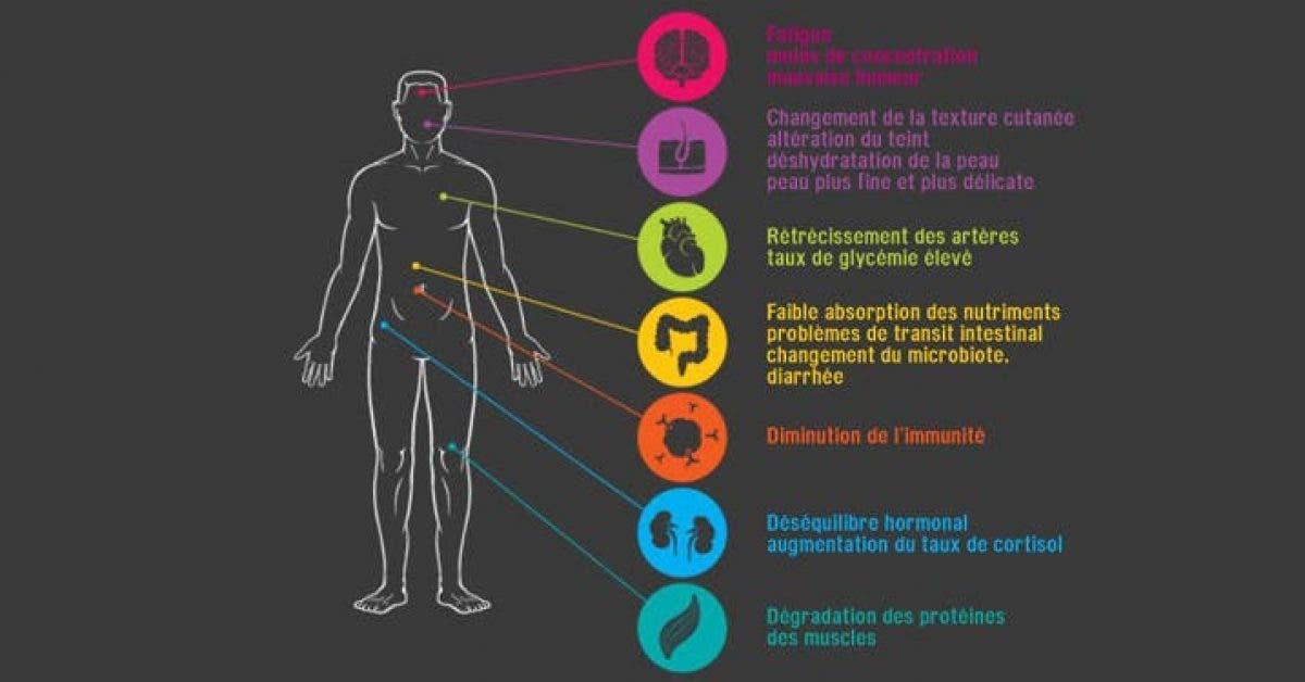 Voici comment vous pouvez evacuer le stress stocke dans votre corps 1 1