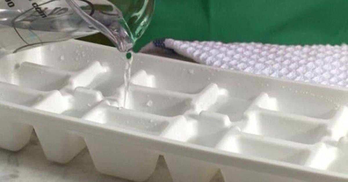 Voici la raison pour laquelle vous devez verser de leau chaude plutot que froide dans votre bac a glacons 1