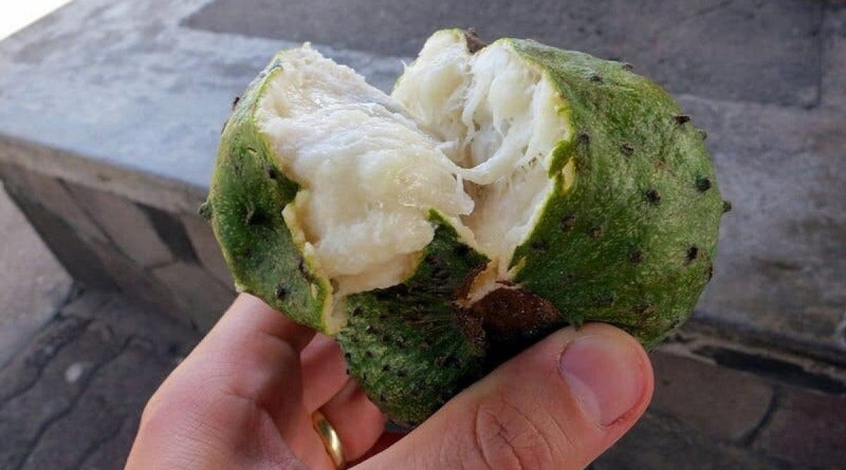 Voici le fruit miraculeux contre le cancer