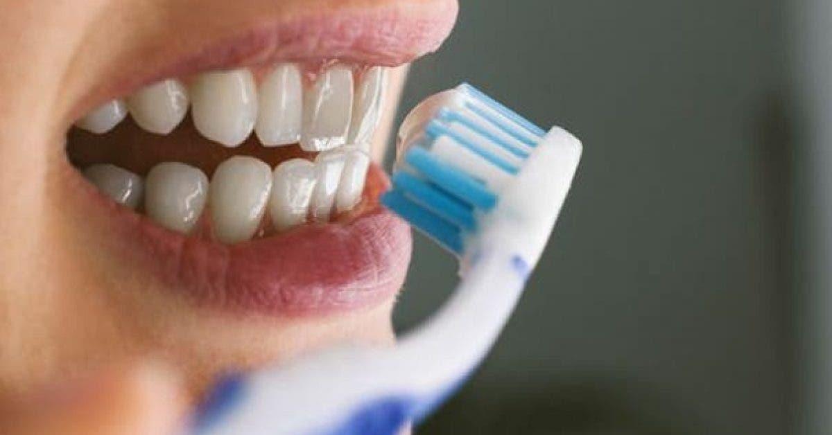 Voici pourquoi le brossage du soir est si important et pas que pour la sante bucco dentaire 1