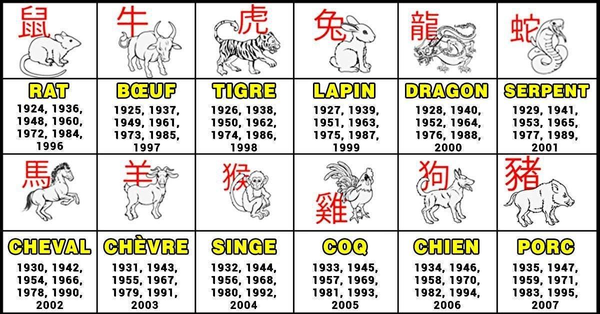 Voici votre plus grande qualité d'après votre signe du zodiaque chinois