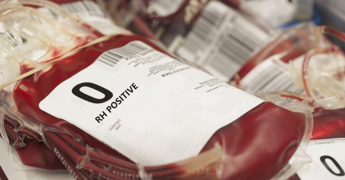 groupe sanguin O