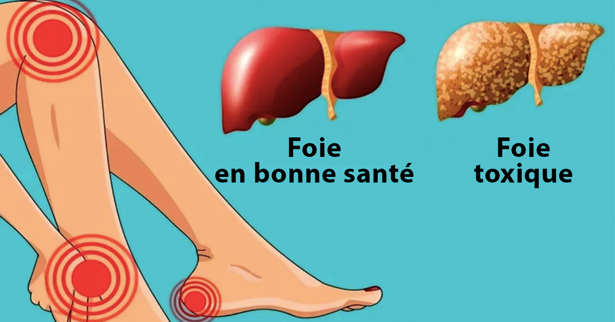 Votre foie est probablement plein de toxines