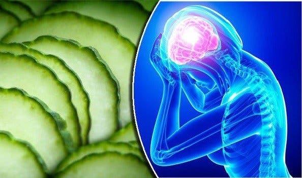 Vous allez manger du concombre tous les jours apr s avoir vu a - Manger des endives tous les jours ...
