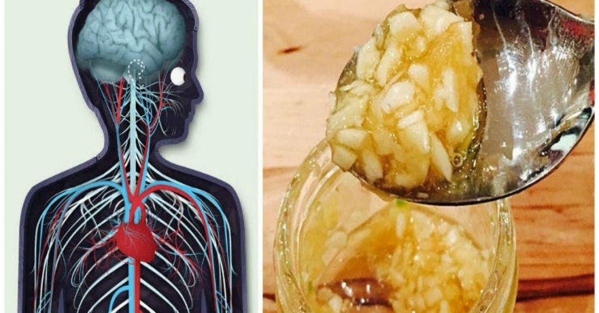Vous nimaginez pas ce qui arrive a votre corps quand vous mangez du miel et de lail a jeun pendant 7 jours 1