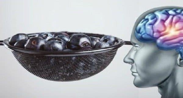 Vous pouvez développer de nouvelles cellules du cerveau