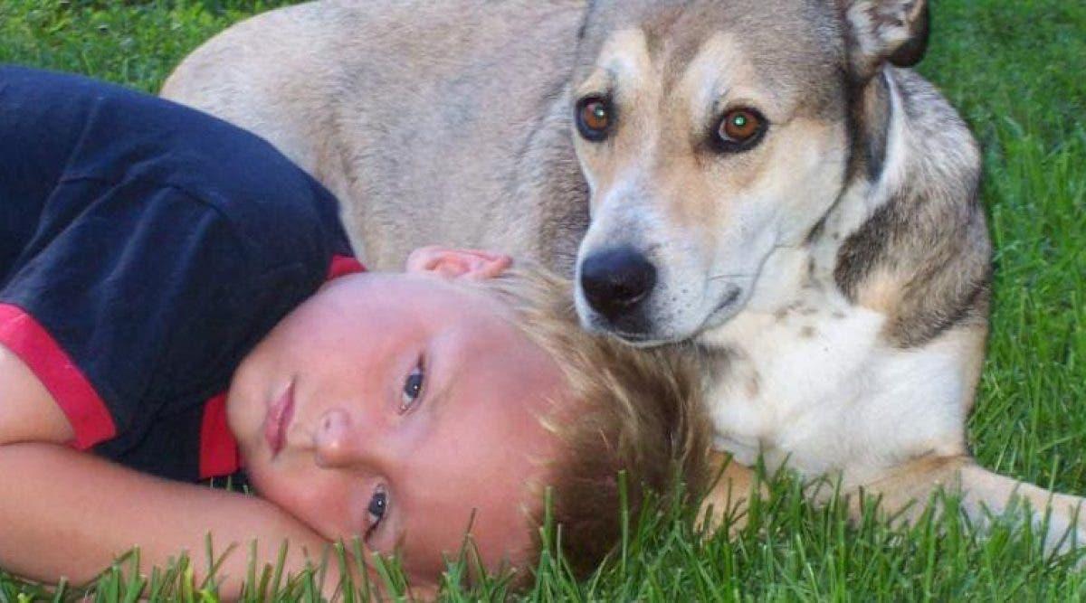 ado décède à l'école après qu'on l'ait privé de son inhalateur contre l'asthme
