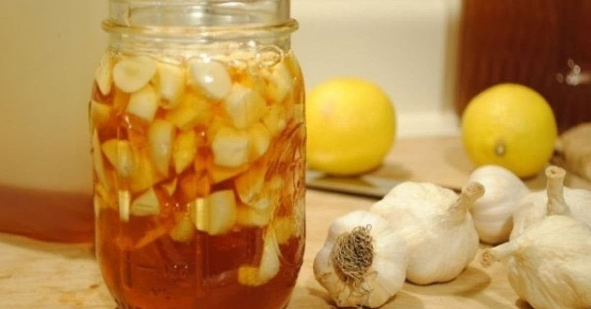 ail-vinaigre-de-cidre-et-miel-une-combinaison-pour-aider-a-combattre-le-diabete-lobesite-et-lindigestion