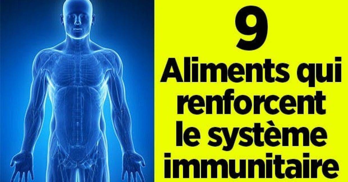 aliments qui renforcent systeme immunitaire 1