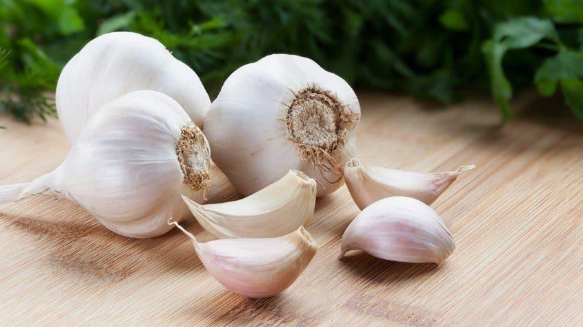 aliments qui revitalisent rapidement vos reins