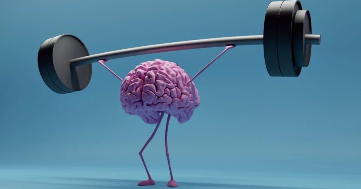 Comment améliorer sa mémoire naturellement ?