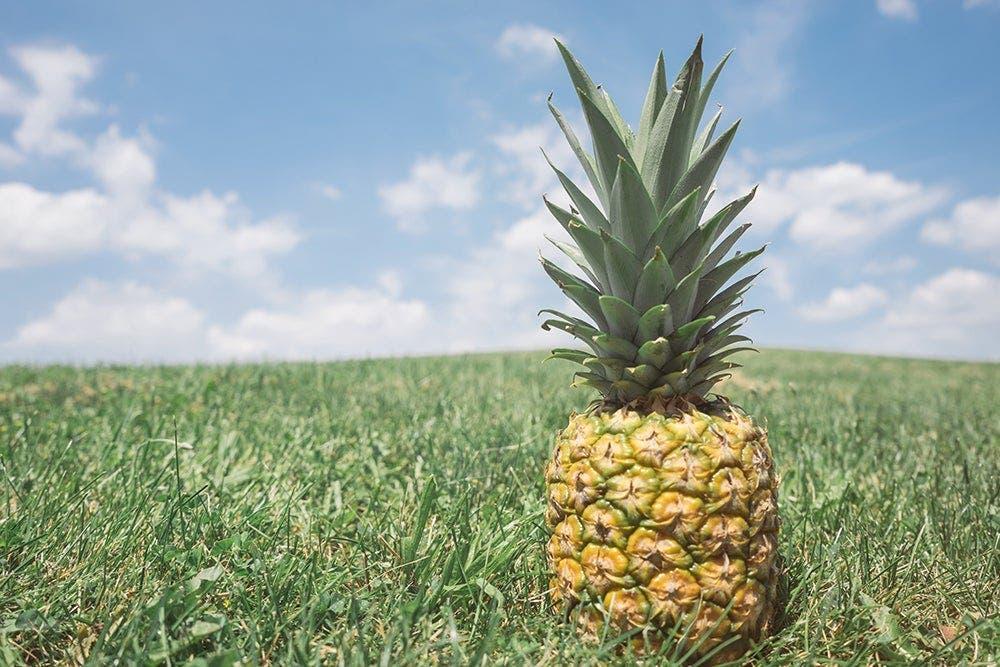 ananas 2 1